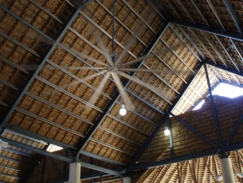 the-roof-with-palm-fronds